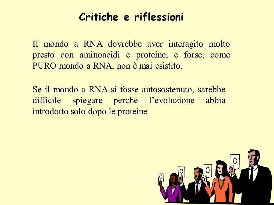 Critiche e riflessioni