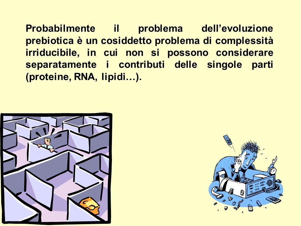 Probabilmente il problema dell'evoluzione prebiotica è un cosiddetto problema di complessità irriducibile, in cui non si possono considerare separatamente i contributi delle singole parti (proteine, RNA, lipidi…).