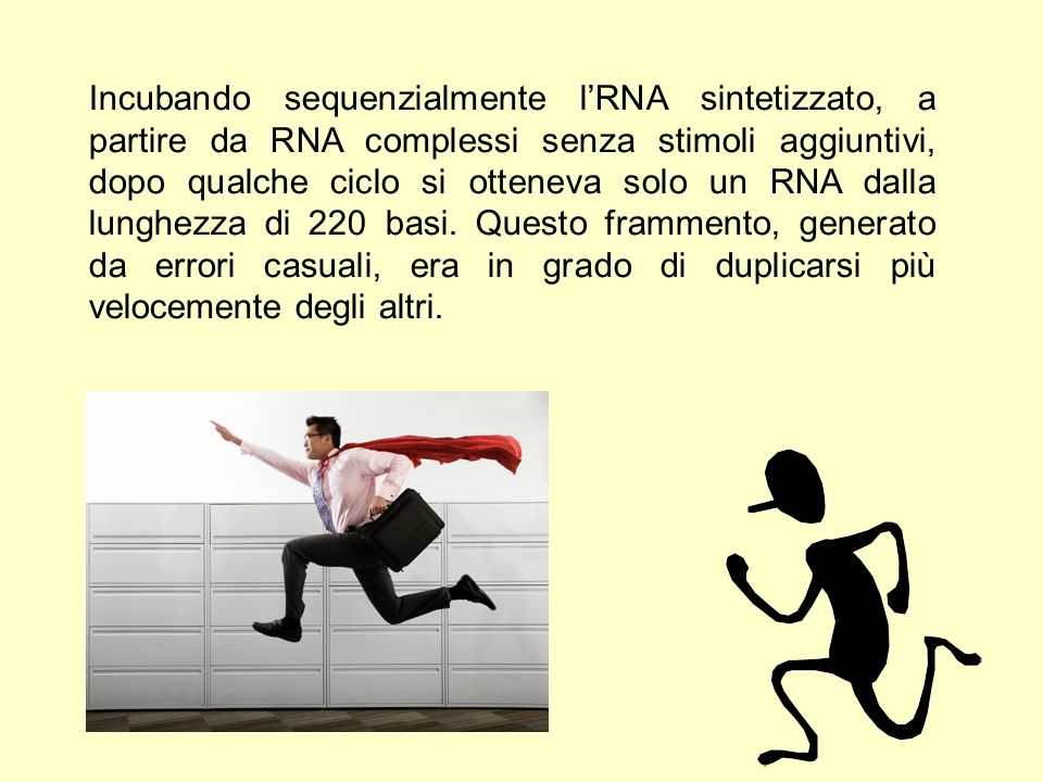 Incubando sequenzialmente l'RNA sintetizzato, a partire da RNA complessi senza stimoli aggiuntivi, dopo qualche ciclo si otteneva solo un RNA dalla lunghezza di 220 basi.