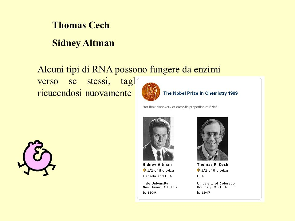 Thomas Cech Sidney Altman.
