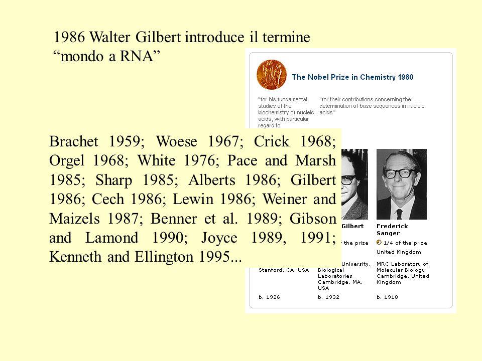 1986 Walter Gilbert introduce il termine mondo a RNA