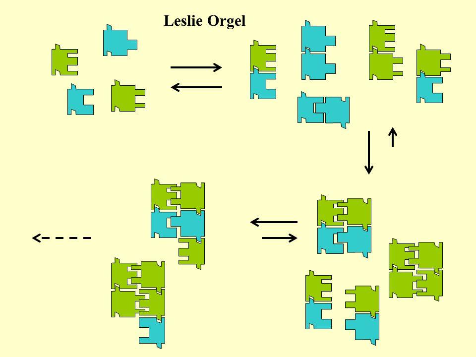 Leslie Orgel