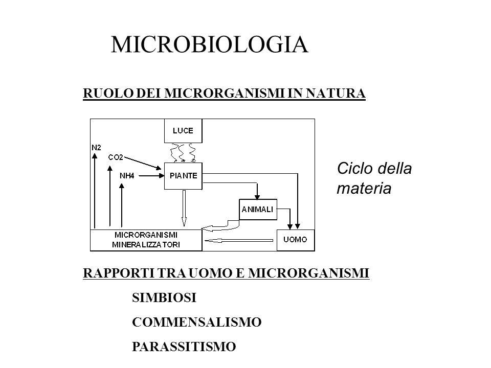 MICROBIOLOGIA Ciclo della materia RUOLO DEI MICRORGANISMI IN NATURA