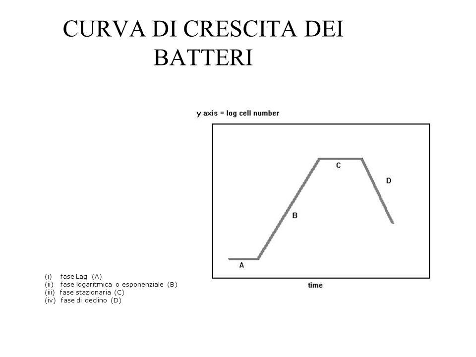 CURVA DI CRESCITA DEI BATTERI