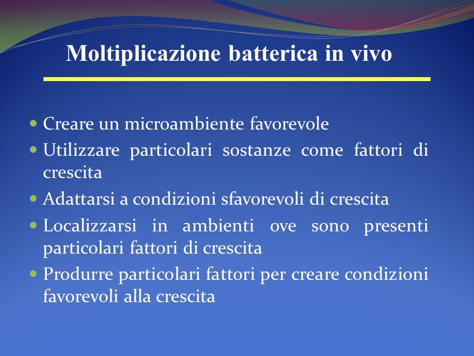 Moltiplicazione batterica in vivo