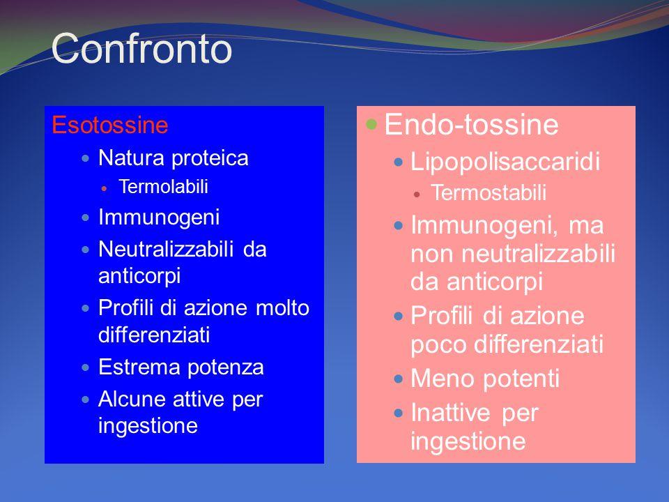 Confronto Endo-tossine Lipopolisaccaridi