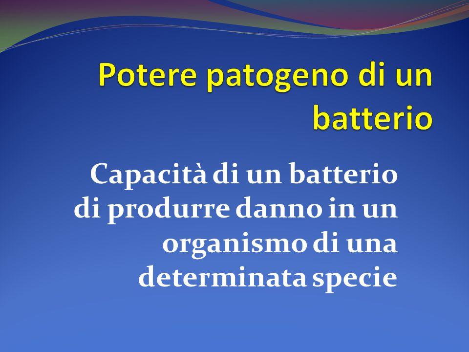 Potere patogeno di un batterio