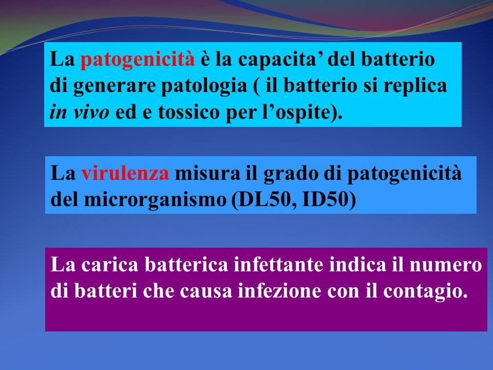 La patogenicità è la capacita' del batterio