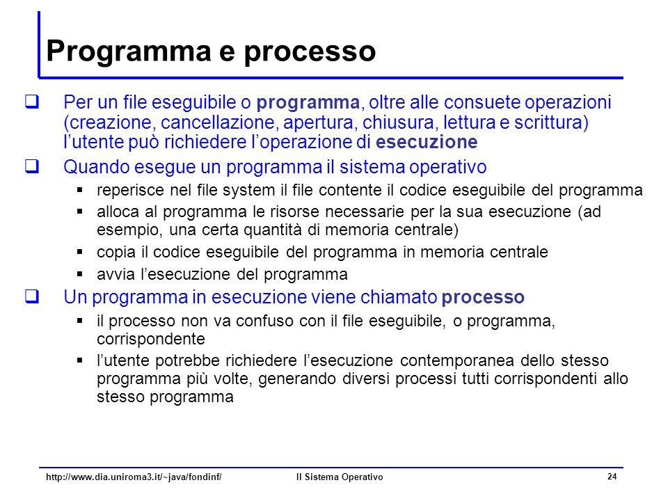 Programma e processo