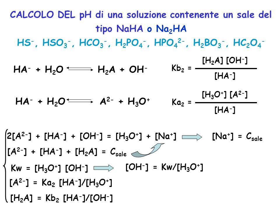 HS-, HSO3-, HCO3-, H2PO4-, HPO42-, H2BO3-, HC2O4-
