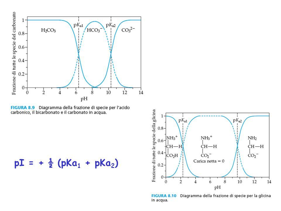 pI = + ½ (pKa1 + pKa2)