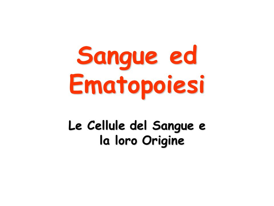 Le Cellule del Sangue e la loro Origine