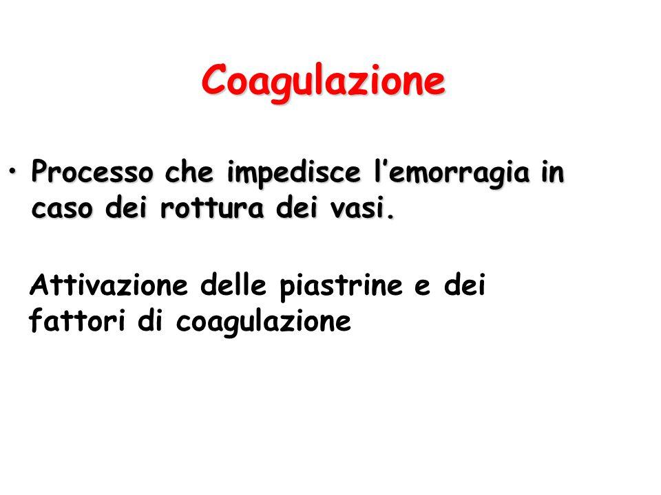 Coagulazione Processo che impedisce l'emorragia in caso dei rottura dei vasi. Attivazione delle piastrine e dei.