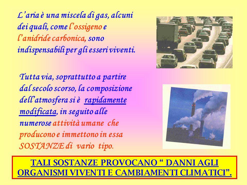 L'aria è una miscela di gas, alcuni dei quali, come l'ossigeno e l'anidride carbonica, sono indispensabili per gli esseri viventi.