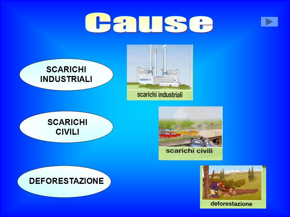 Cause SCARICHI INDUSTRIALI SCARICHI CIVILI DEFORESTAZIONE