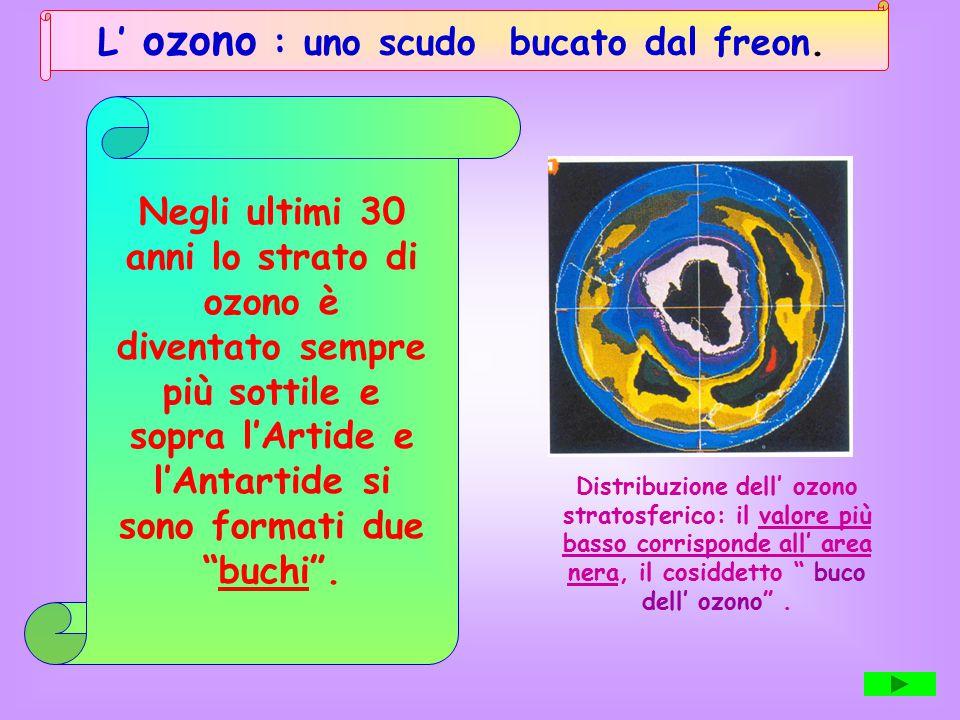 L' ozono : uno scudo bucato dal freon.