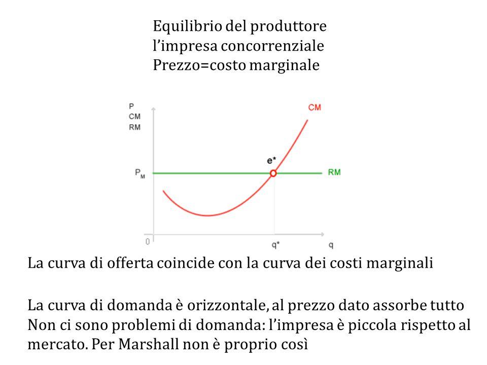Equilibrio del produttore l'impresa concorrenziale