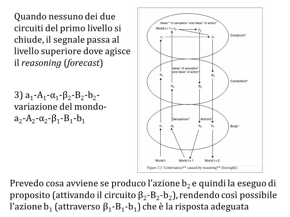 Quando nessuno dei due circuiti del primo livello si chiude, il segnale passa al livello superiore dove agisce il reasoning (forecast)