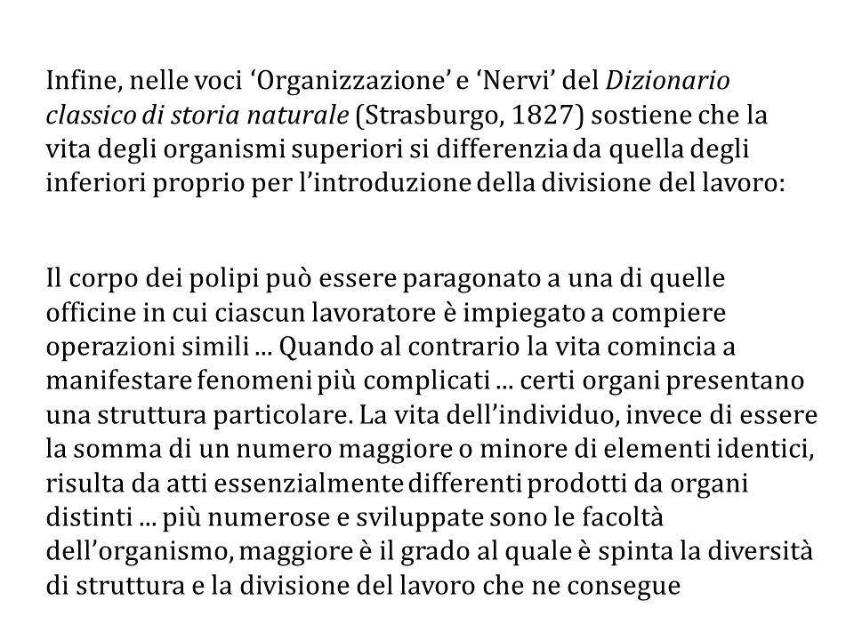 Infine, nelle voci 'Organizzazione' e 'Nervi' del Dizionario classico di storia naturale (Strasburgo, 1827) sostiene che la vita degli organismi superiori si differenzia da quella degli inferiori proprio per l'introduzione della divisione del lavoro: