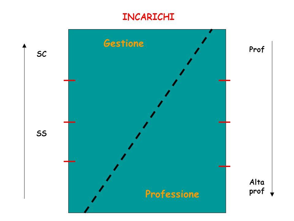 INCARICHI Gestione Prof Alta prof SC SS Professione
