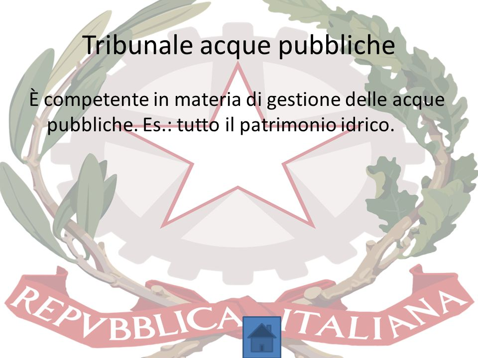 Tribunale acque pubbliche
