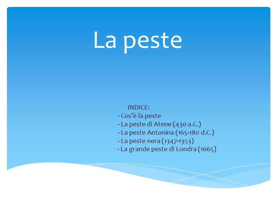 La peste INDICE: - Cos'è la peste - La peste di Atene (430 a.C.)