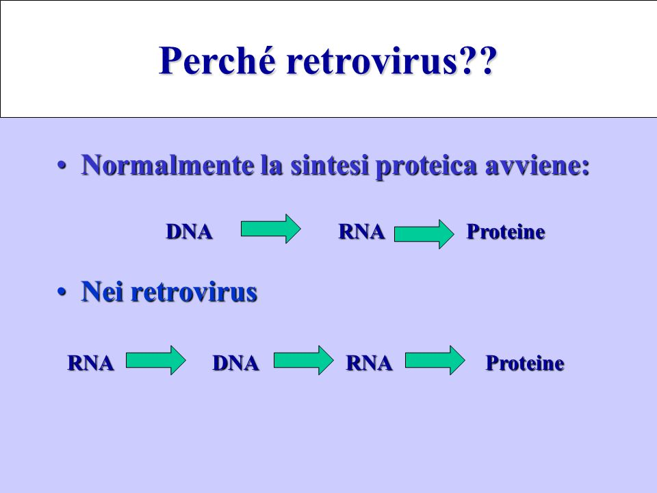 Perché retrovirus Normalmente la sintesi proteica avviene: