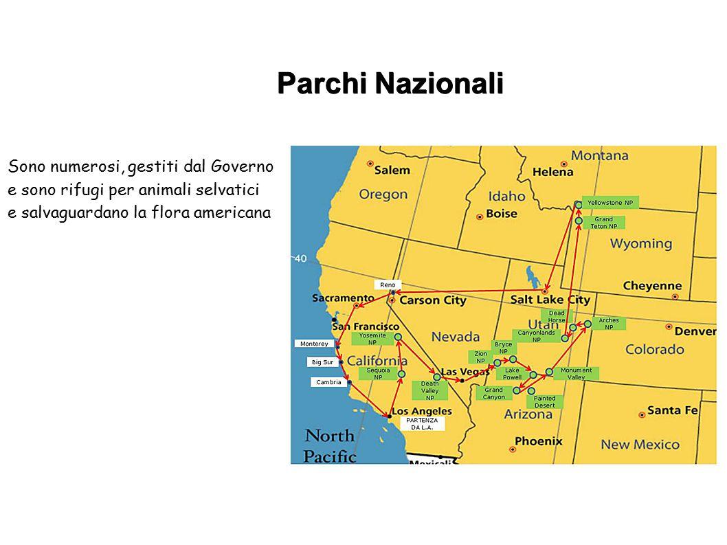 Parchi Nazionali Sono numerosi, gestiti dal Governo