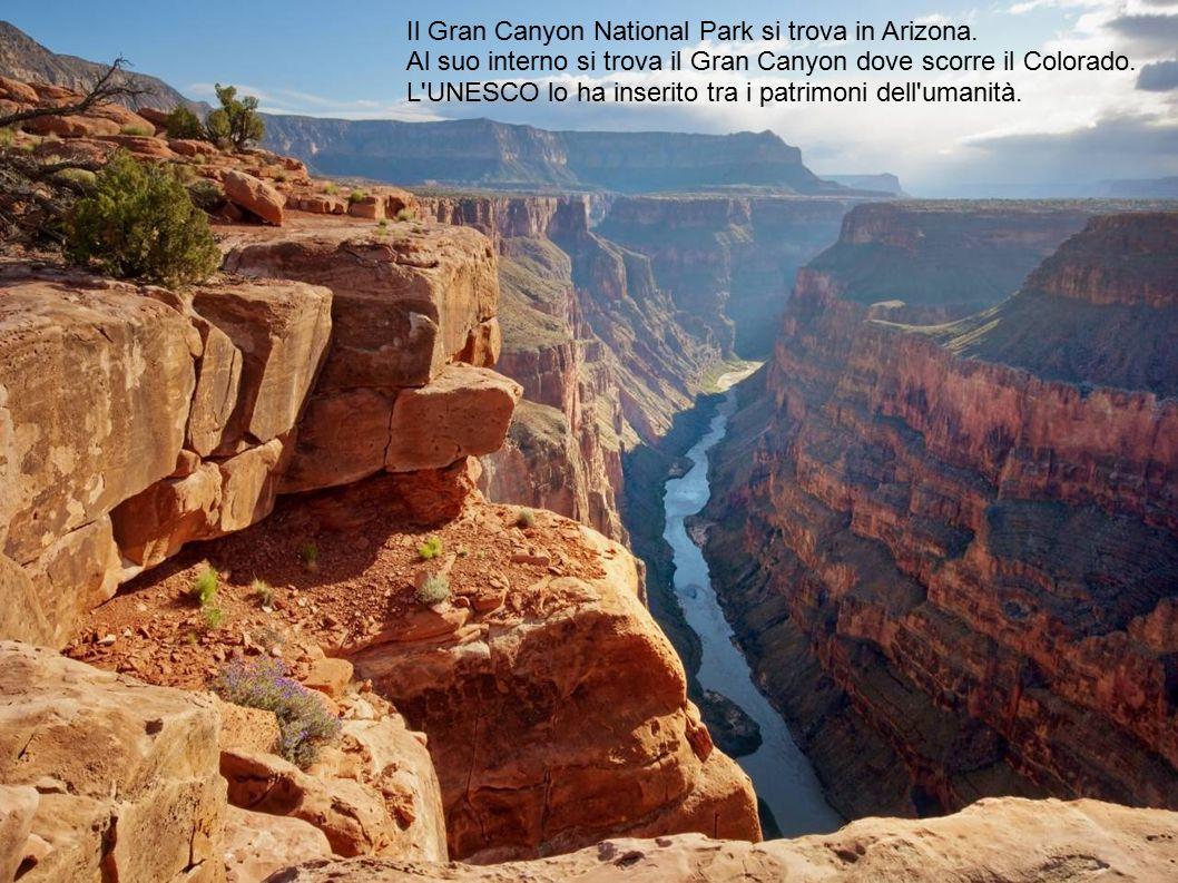 Il Gran Canyon National Park si trova in Arizona.