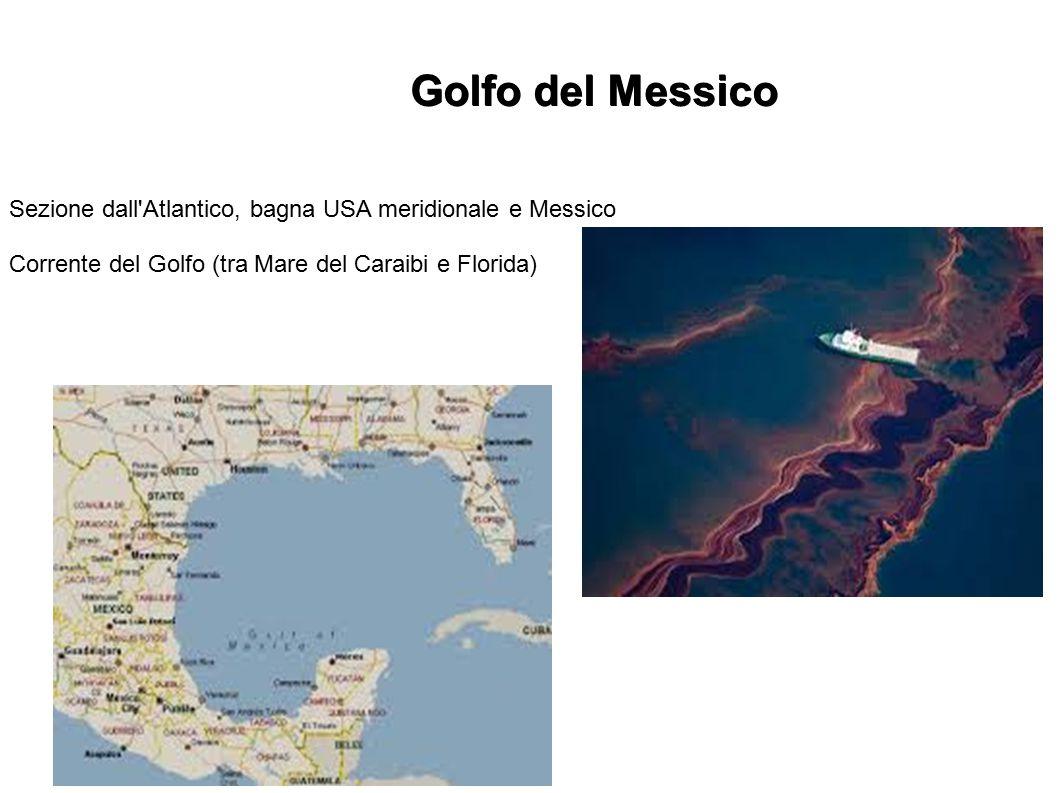 Golfo del Messico Sezione dall Atlantico, bagna USA meridionale e Messico.