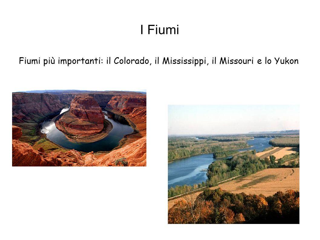 I Fiumi Fiumi più importanti: il Colorado, il Mississippi, il Missouri e lo Yukon
