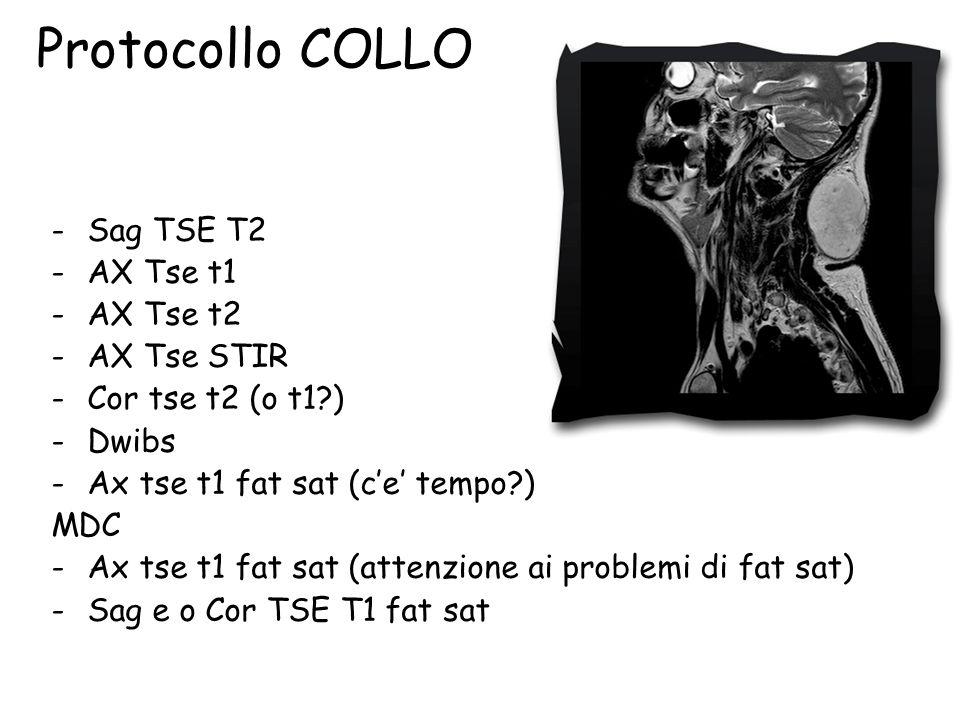 Protocollo COLLO Sag TSE T2 AX Tse t1 AX Tse t2 AX Tse STIR