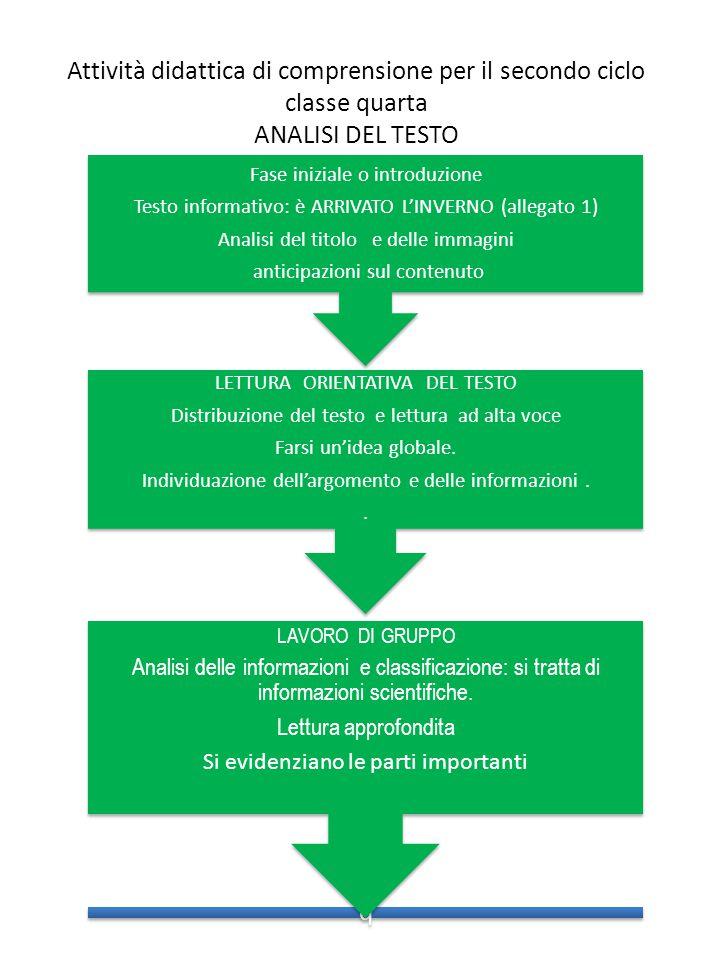 Top Programmazione attività di comprensione nel secondo ciclo della  HG46