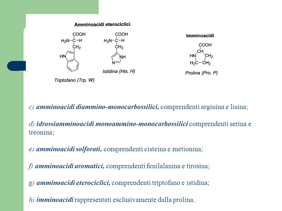 c) amminoacidi diammino-monocarbossilici, comprendenti arginina e lisina;