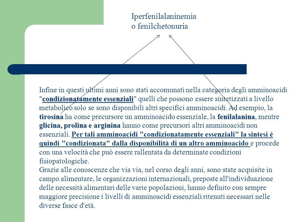Iperfenilalaninemia o fenilchetonuria