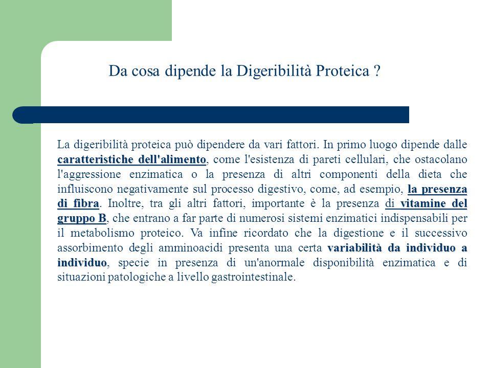 Da cosa dipende la Digeribilità Proteica