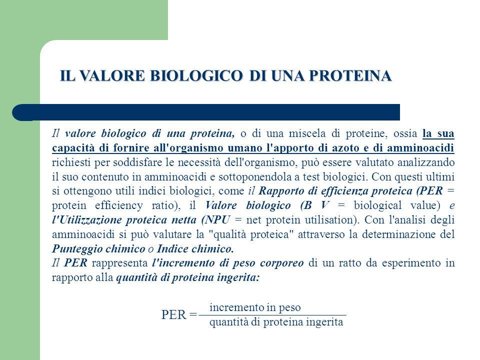 IL VALORE BIOLOGICO DI UNA PROTEINA