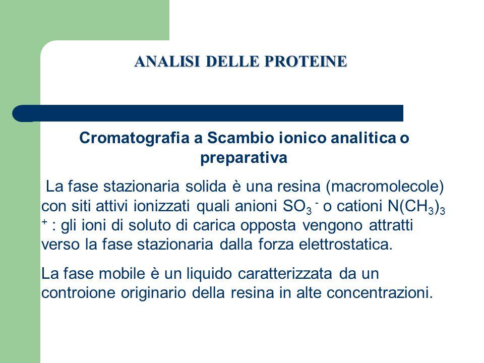 Cromatografia a Scambio ionico analitica o preparativa