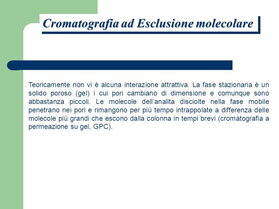 Cromatografia ad Esclusione molecolare