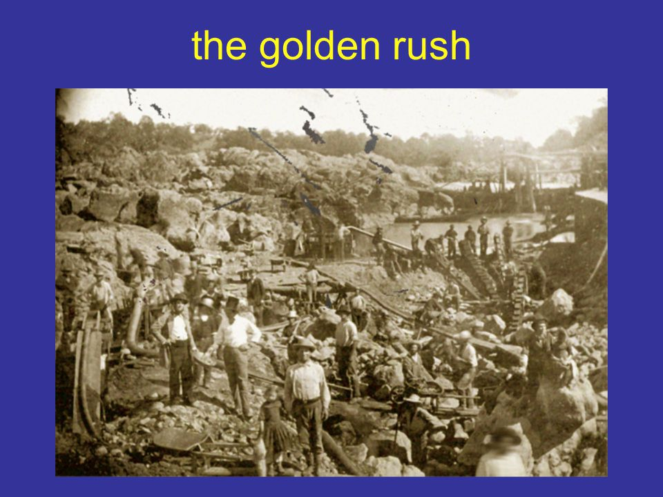 the golden rush