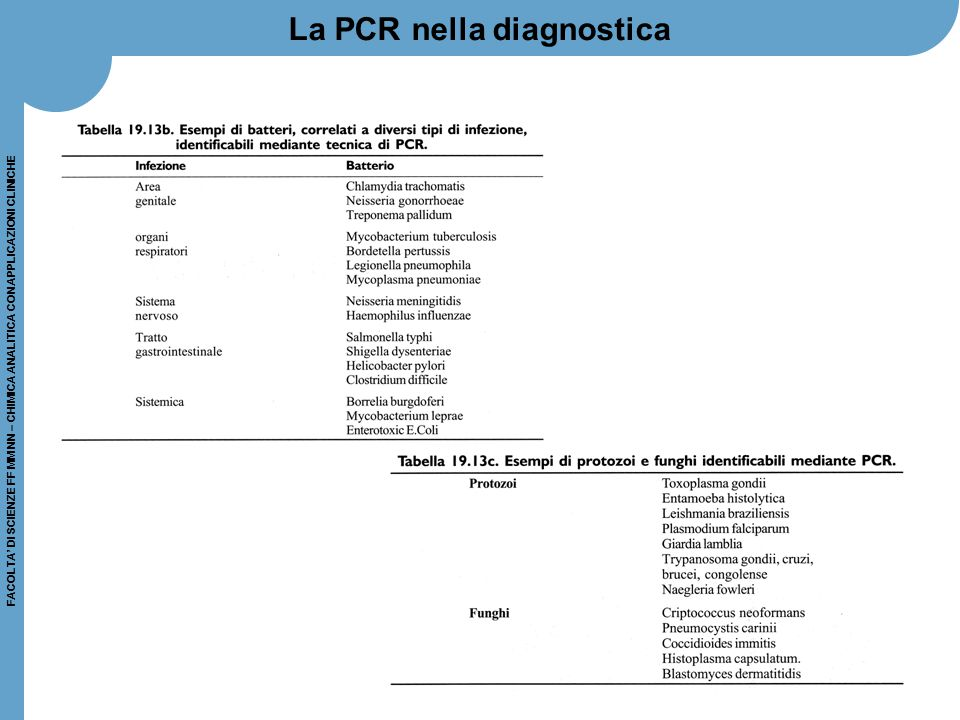 La PCR nella diagnostica