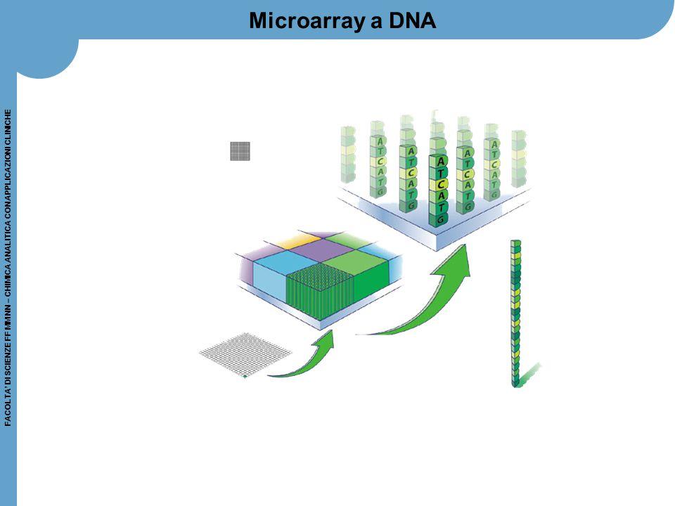 Microarray a DNA