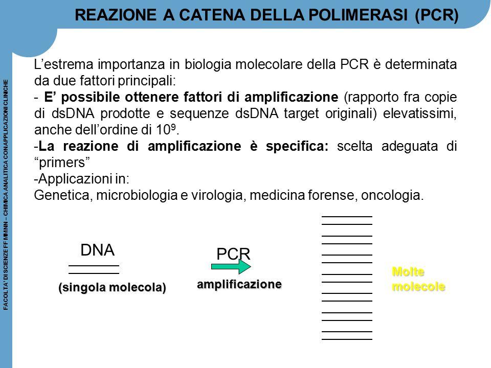 REAZIONE A CATENA DELLA POLIMERASI (PCR)
