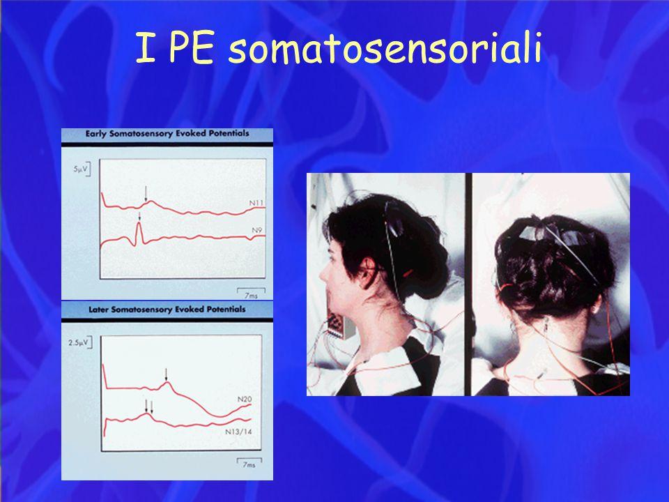 I PE somatosensoriali