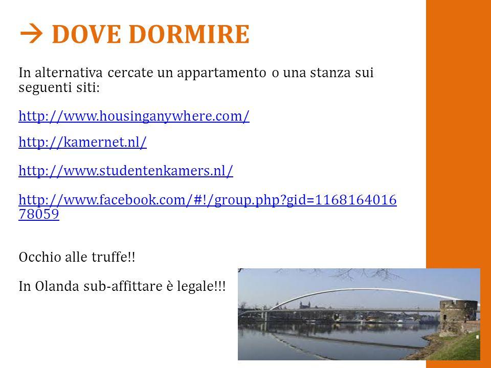  DOVE DORMIRE In alternativa cercate un appartamento o una stanza sui seguenti siti: http://www.housinganywhere.com/