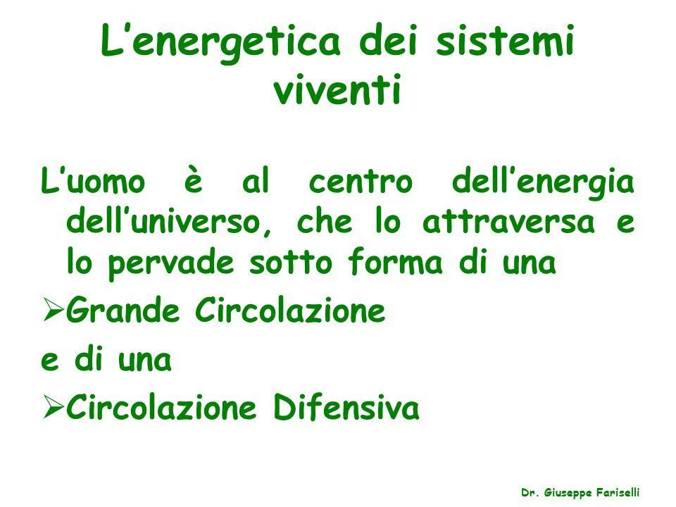 L'energetica dei sistemi viventi