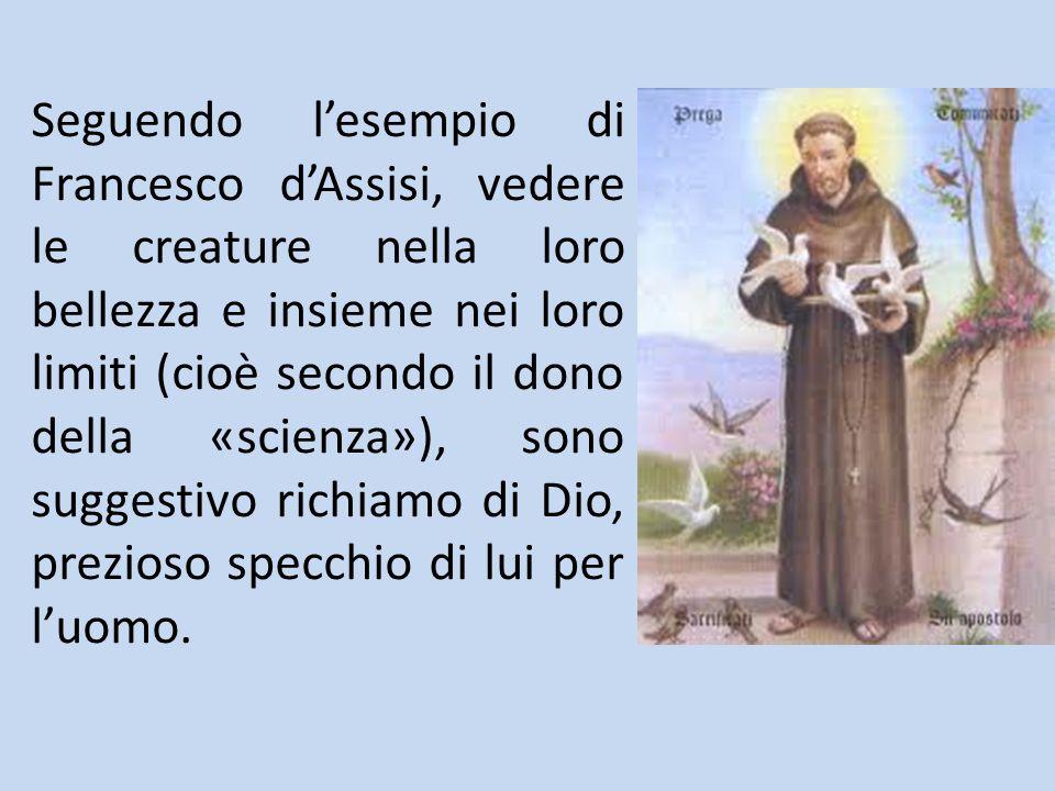 Seguendo l'esempio di Francesco d'Assisi, vedere le creature nella loro bellezza e insieme nei loro limiti (cioè secondo il dono della «scienza»), sono suggestivo richiamo di Dio, prezioso specchio di lui per l'uomo.