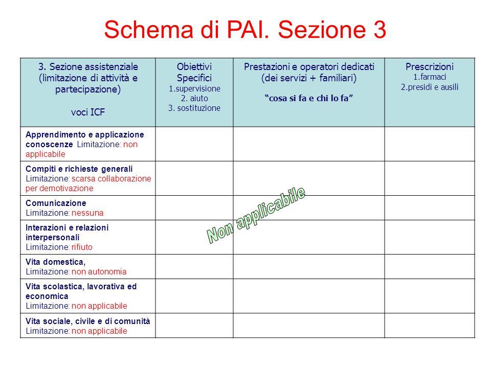 Schema di PAI. Sezione 3 Non applicabile 3. Sezione assistenziale