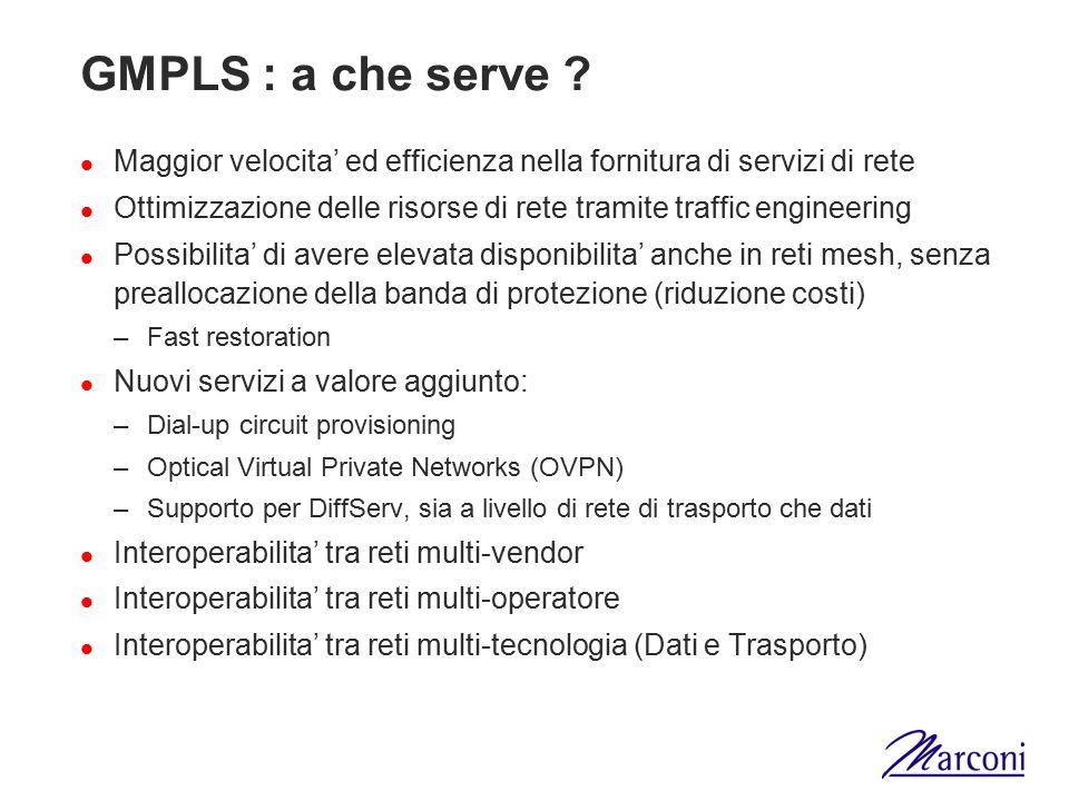 GMPLS : a che serve Maggior velocita' ed efficienza nella fornitura di servizi di rete.