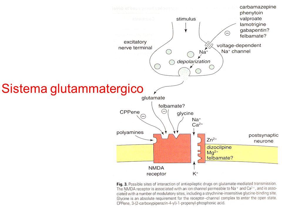 Sistema glutammatergico